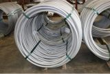Hexagonal Wire Rod
